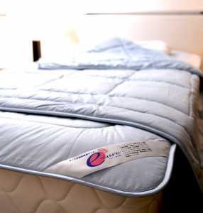 イーキュア(多機能健康寝具)