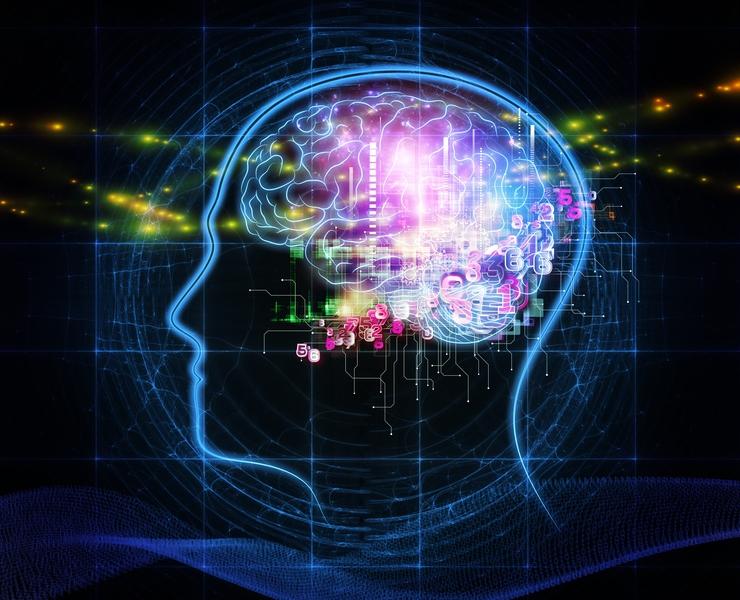 統合失調症の脳イメージ